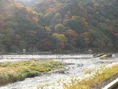 07,11嵐山.JPG