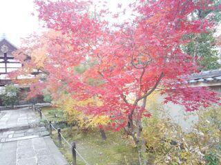 2013嵐山1.jpg
